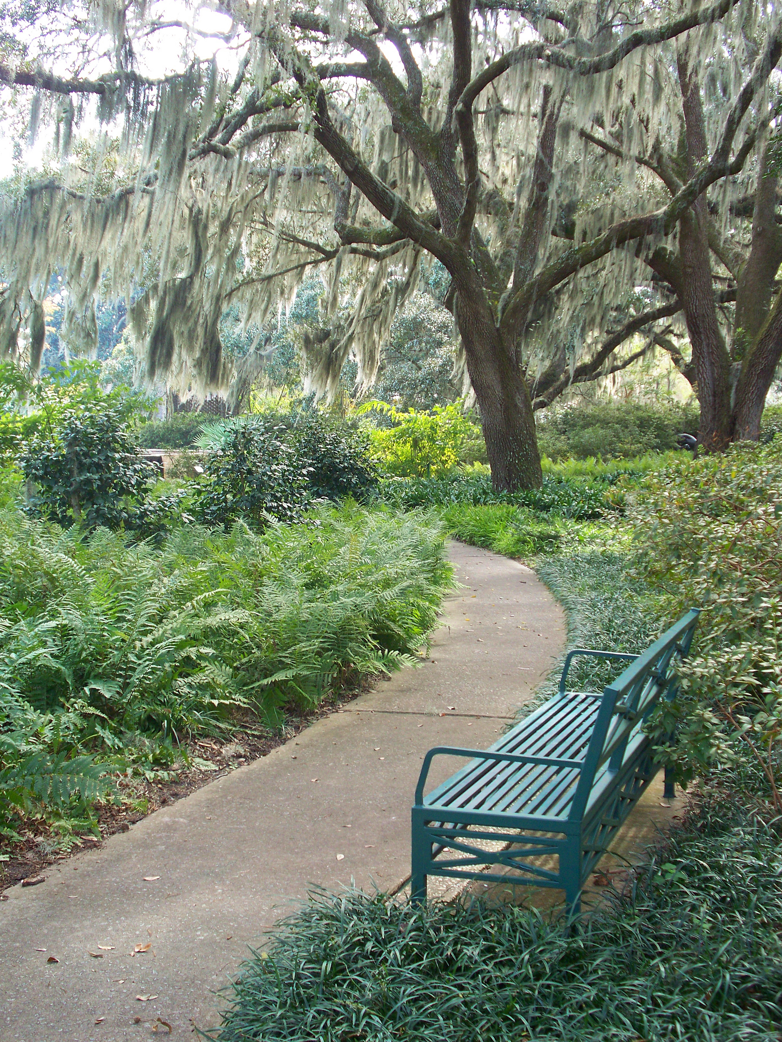 Thriving in the Carolinas – Relocation & Transition